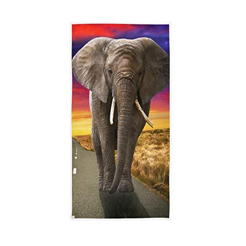 PIXIUXIU - Toallas de mano de secado rápido, toalla de rostro absorbente de animales africanos al atardecer, suaves, gruesas, absorbentes, para uso diario, 76 x 15 pulgadas