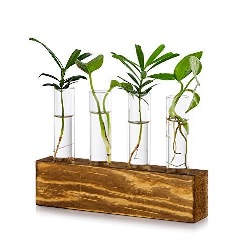 Tischplatte Hängende Glas Pflanzer Vermehrungsstation Moderne 4 Reagenzglas Blume Knospe Vase in Holz Stehen für Hydroponik Pflanzen Stecklinge Büro Home Decoration