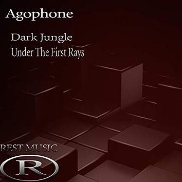 Dark Jungle / Under The First Rays