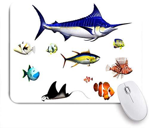 Dekoratives Gaming-Mauspad,Aquarium, verschiedene Fischarten in Pose Swodfish Clownfish Hawaiian Pacific Waters Fauna Decorative,Bürocomputer-Mausmatte mit rutschfester Gummibasis