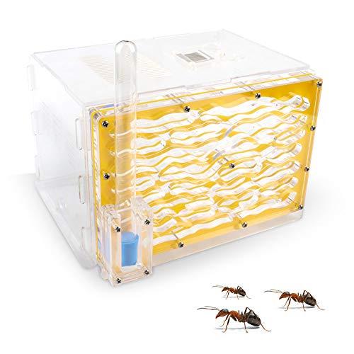 Yulie Ameisen-Nest Insektenkäfig Farmen mit Futterbereich Ameisennest, feuchtigkeitsspendende Kunststoffbox quadratisch Acryl Box