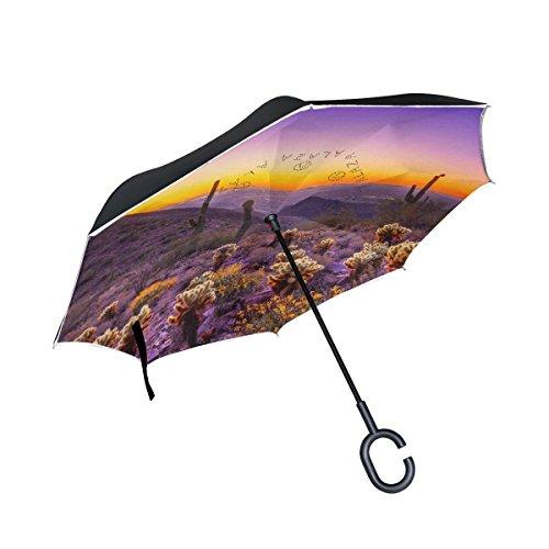jstel Double Layer seitenverkehrt Desert Sunset Kaktus Berge Regenschirm Cars Rückseite winddicht Regen Regenschirm für Auto Outdoor mit C geformter Griff
