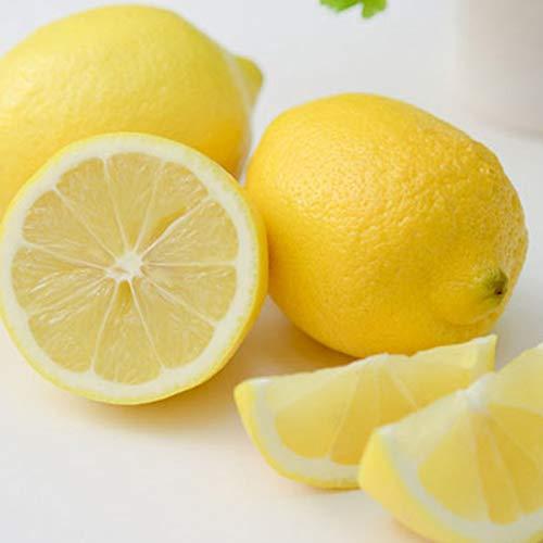 瀬戸内レモン 秀品 2kg 塩レモンに最適な国産生レモン マルシェ愛媛
