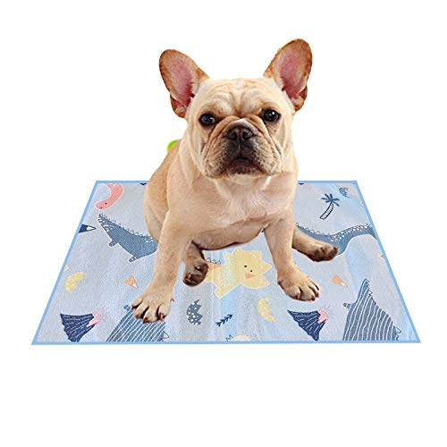 Alfombra Refrescante para Perros, Colchoneta para Dormir de Doble Cara Impermeable, a Prueba de Orina y Transpirable para Mascotas (35 x 50 CM Verde)