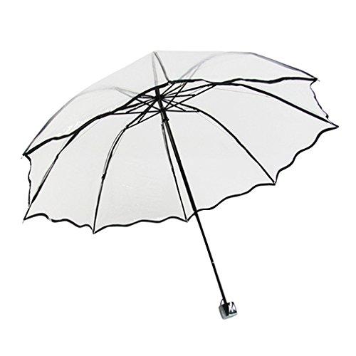 Formemory Damen Regenschirme Transparent,Tragbarer Stock Regenschirme,Outdoor Taschenschirm,Handbuch Geschenk für Geburtstag