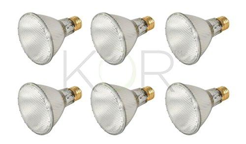 (Pack of 6)60PAR30L/FL 120V - 60 Watt High Output (75W Replacement) PAR30 Long Neck Flood - 120 Volt Eco Halogen Light Bulbs - Dimmable - Indoor/Outdoor Use