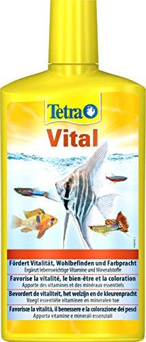 TetraVital Wasserpflege, zur Förderung von Vitalität, Wohlempfinden und Farbenpracht von Zierfischen, 500 ml Flasche