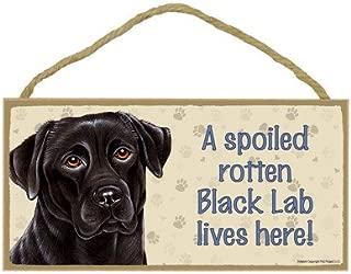 SJT ENTERPRISES, INC. A Spoiled Rotten Black Lab Lives here Wood Sign Plaque 5
