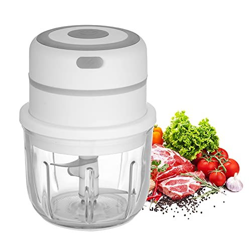 Staright Electric Mini Garlic Chopper Food Slicer Portable Garlic Grinder Blender Food Processor for Pepper Chili Vegetable Nuts Meat 300ML USB Reable