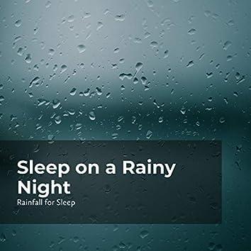 Sleep on a Rainy Night