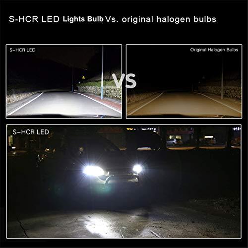 ALLA LED Bulb Kit