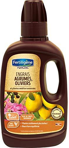 Fertiligène Engrais Agrume Olivier et Plante Méditerranéenne Bio, 400 ML