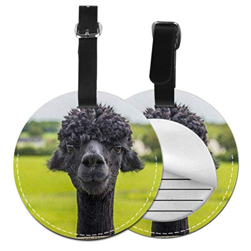 Unique Luggage Tags for Women A Cute Smart Pretty Alpaca Luggage Tag for Men Cute Travel Bag Tags with Adjustable Black Strap for Bags & Baggage with Privacy Protection for Women Men