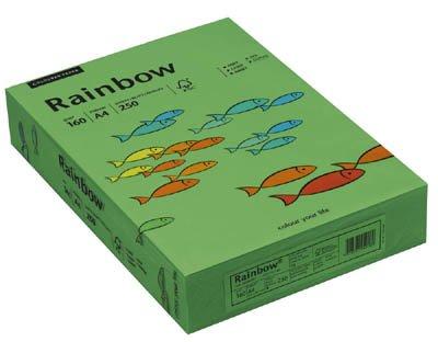 Rainbow Kopierpapier 88042681 A4 160g intensivgrün 250 Bl./Pack.