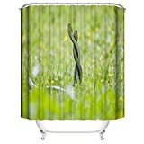 ZZZdz Duschvorhang: 180 X 180 cm. Wasserdichter Stoffteppich Für Duschvorhang. Bad Duschvorhang Set Polyesterfaser Bad Duschvorhang. Schlange Im Gras.