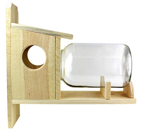 Uncle Dunkels Backyard Squirrel Feeder, One Gallon Glass Jar Entertaining and Enjoyable Squirrel Feeder, Corn, Peanuts, and Seeds