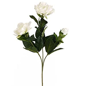 27″ Silk Gardenia Flower Stem -White (Pack of 6)