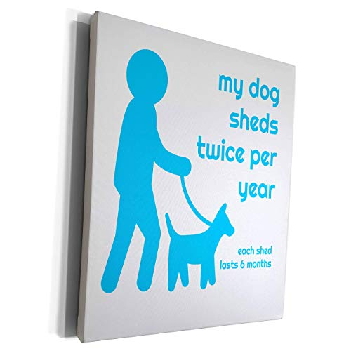 Unframe Canvas Printing Wall Art 30x40 Carrie Merchant Quote Image Of My Dog Sheds Twice Per Year Each Shed Lasts 6 Months Framed Canvas Art Picture Print Wall Decoration for Living Room/Bed Room