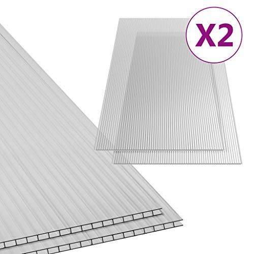 vidaXL 2x Polycarbonatplatte Doppelstegplatten Hohlkammerplatten Polycarbonat Stegplatten Hohlkammerplatte Doppelstegplatte 10mm 150x65cm