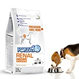 Forza10 Kidney Care Dog Food, Dry Renal Dog Food for Adult Dogs, 8.8 Pound Bag, Fish Flavor Kidney Failure Dog Food for All Breeds and Sizes