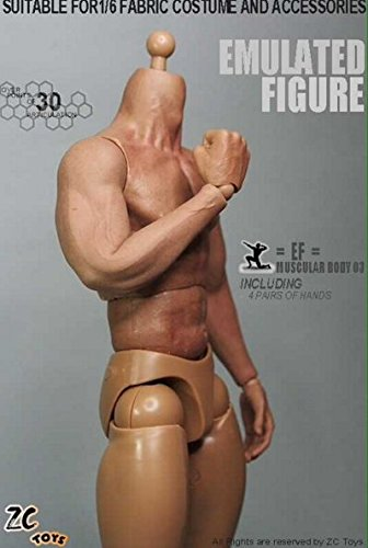 ZC Toys 1/6 Scale 3.0 Muscular Figure Body Seamless arm TTM19