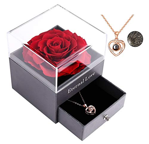 Preserved Real Rose with Love You Necklace in 100 Languages Gift Set, Enchanted Real Rose Flower for Valentine's Day Anniversary Wedding Bthday Romantic Gifts for her (Red Rose)