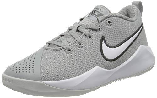 Nike Team Hustle Quick 2 Basketball Shoe, Light Smoke Grey/White-Dark Smoke Grey-Photon Dust, 39 EU