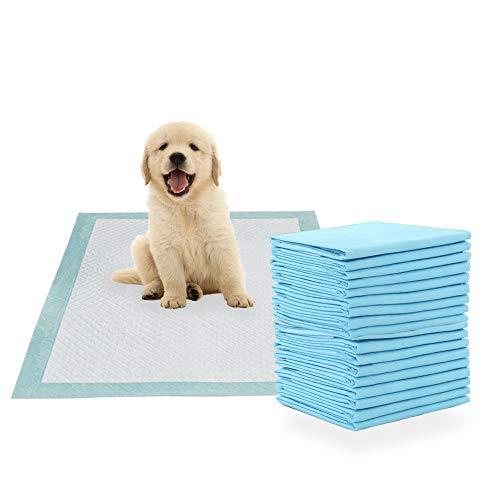 MICOOYO - Tappetino per cani e cuccioli, ultra assorbente, 60 x 60 cm, 40 pezzi