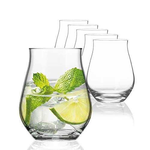 SAHM Sensorik Gin Gläser Set 6 Stück | 420ml Sensorik Gin Tonic Gläser | Tolles Gin Geschenkset