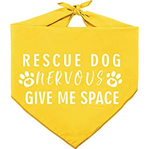 Pawskido Nevous Give Me Some Space Dog Bandana Reversible Triangle Bibs Pet Scarf