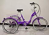 SCOUT Tricycle Adulte, Cadre en Alliage, Pliable, 6 Vitesses, Suspension Avant, Trike Pliant - Violet