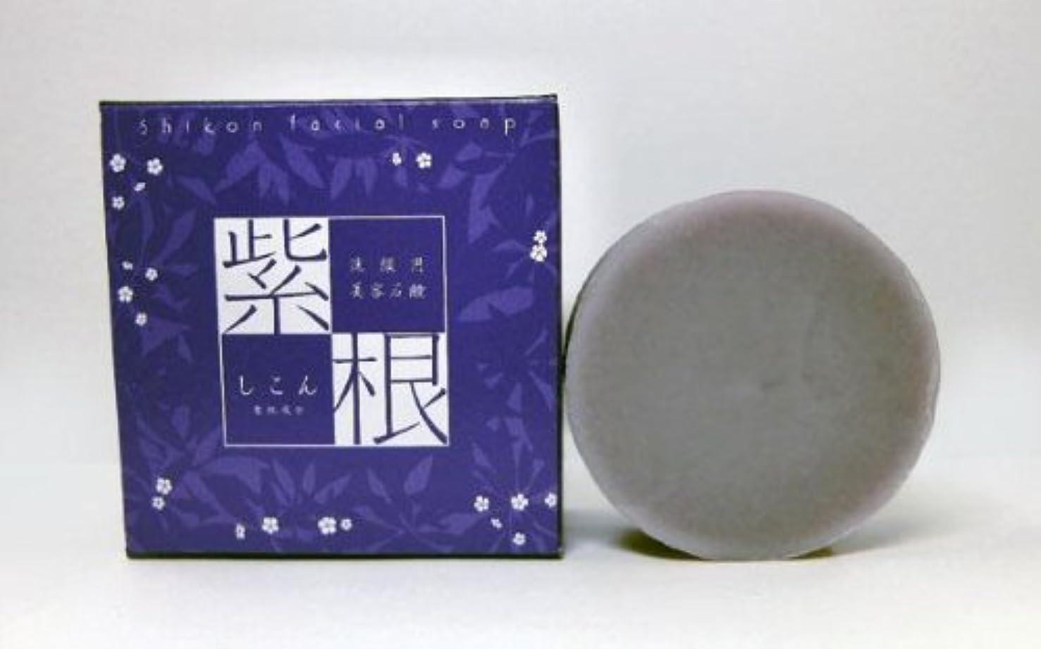 貸すグリップ愛情紫根石鹸 100g×5個セット