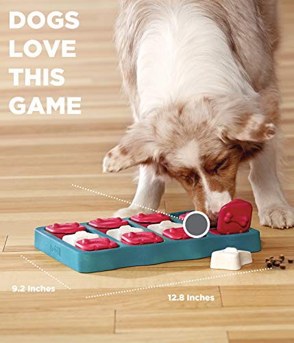 Outward Hound Dog Brick Treat Dispensing Dog Toy Brain and Exercise Game for Dogs by Nina Ottosson