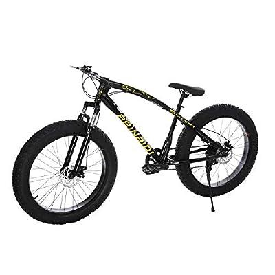 YaYiYa Fat Tire Mountain Bikes - 21 Speed Anti-Slip Bike 26 inch Fat Tire Sand Bike Double Disc Brake Suspension Outdoor Sports