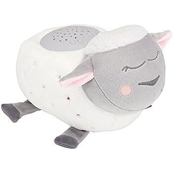 Cloud B 7423 AQ - Proyector infantil de pared, diseño de tortuga ...