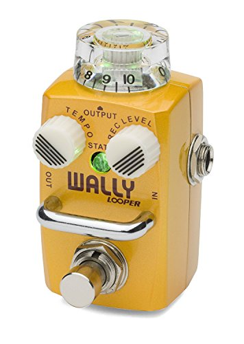 Hotone Wally Looper Loop Station