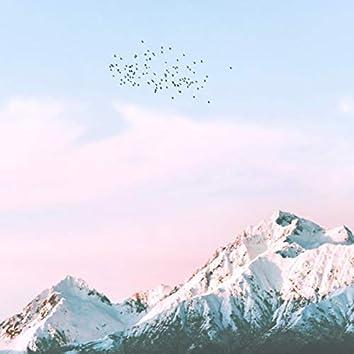 Música Relajante Con El Canto De Los Pájaros (Piano)