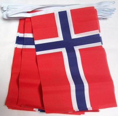 AZ FLAG FAHNENKETTE NORWEGEN 4 Meter mit 20 flaggen 15x10cm- NORWEGISCHE Girlande Flaggenkette 10 x 15 cm
