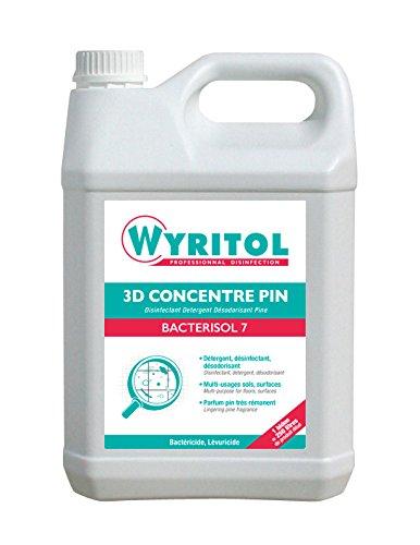 WYRITOL Pro Nettoyant Pin
