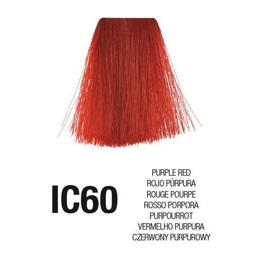 Teinture en crème Postquam Linea Essential Color IC60 Rouge pourpre