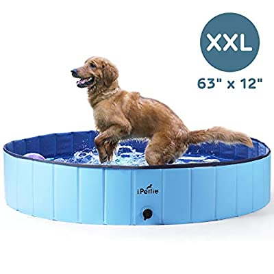 """iPettie Foldable Dog Swimming Pool, Portable Collapsible Outdoor Pet Bathing Tub, Kiddie Pool for Dog Cats & Kids, 63"""" x 12"""""""