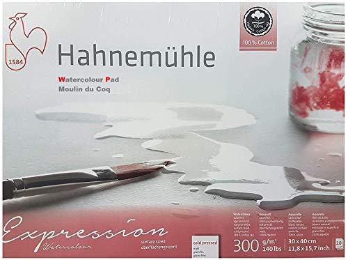 Hahnemühle Expression - Cartiluna de acuarela, 100% algodón, mate, 300 g/m², 30 x 40 cm, 20 hojas, fabricado en Alemania