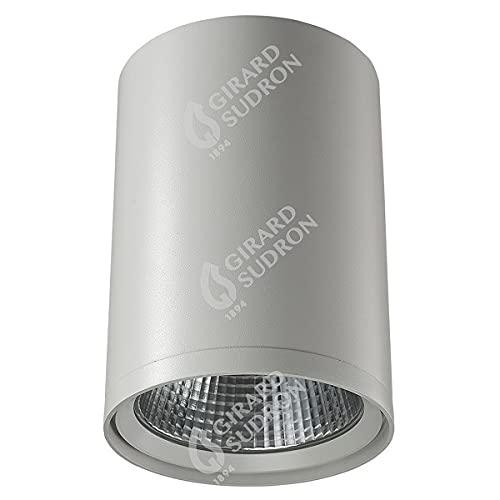 Girard Sudron - Foco LED (30 W, 4000 K, 3000 lúmenes, 24º), color blanco