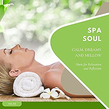 Spa Soul - Calm, Dreamy And Mellow Music For Relaxation And Reflextion, Vol. 03