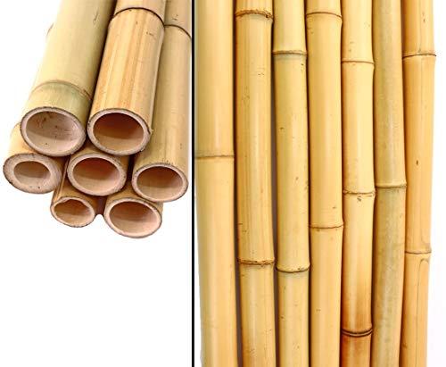 bambus-discount.com Bambusrohr, Tokio, lackiert, 2,8-3,5cm x 200cm Bambus Rohre - Bambuse