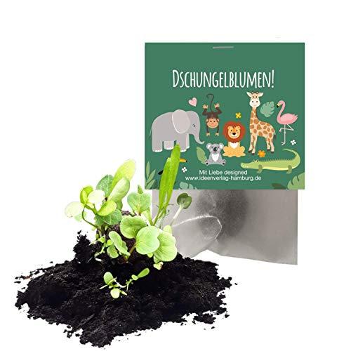 """12x \""""Dschungel / Zoo\"""" Samenbomben als Mitgebsel zum Kindergeburtstag / Seedbombs / Wildtiere / Partytüten / Mitgebseltüten / Geschenktüten / Blumen / Give-aways / Geburtstag / Kinder / Saatkugeln"""