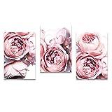 BD-Boombdl Impresión de Flores Blush Poster Pink Peony Wall Art Canvas Painting Estilo nórdico Imagen Moderna Sala de Estar Decoración del hogar 40X70 Cm X3 Sin Marco