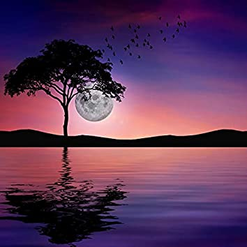 Midnight Serene