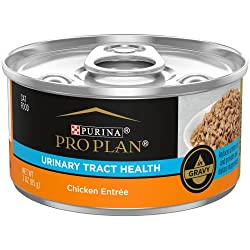 Proplan focus Urinary Tract Health