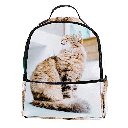 TIZORAX Mochila pastoral de pelo largo persa para portátil, mochila de hombro casual para estudiantes, mochila escolar y bolso de mano – ligera